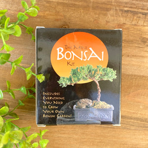 The Mini Bonsai Kit Box