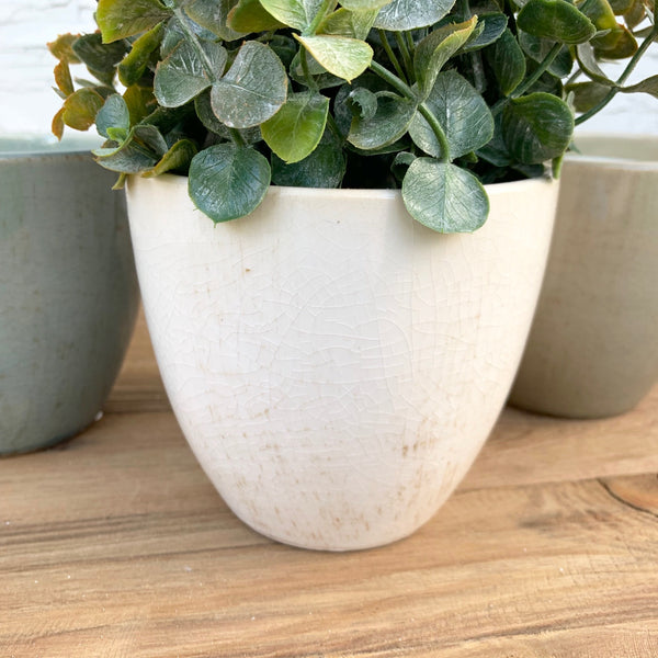 Neutral Hued Pots