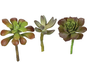 Mini Succulent Pick