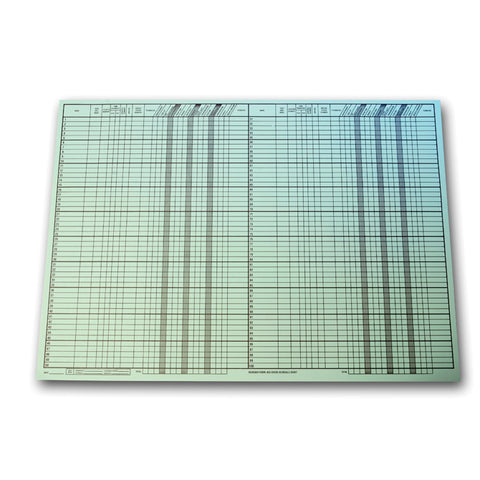 "Route Sheet - BIG GREEN, 28"" x  20"", 50 Per Pad - Independent Dealer Services"