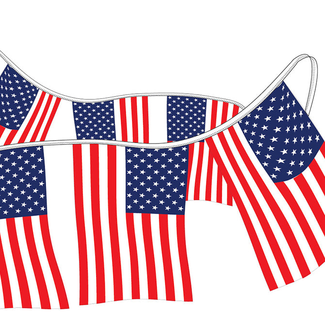 American Flag Pennants - Polyethylene - Qty. 1 - Independent Dealer Services