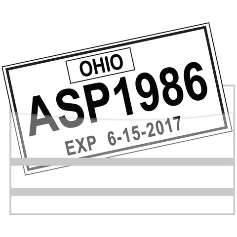 License Plate Tag Bags with Adhesive - Qty. 100 - Independent Dealer Services