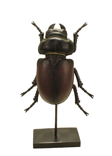 Beetle on Stand