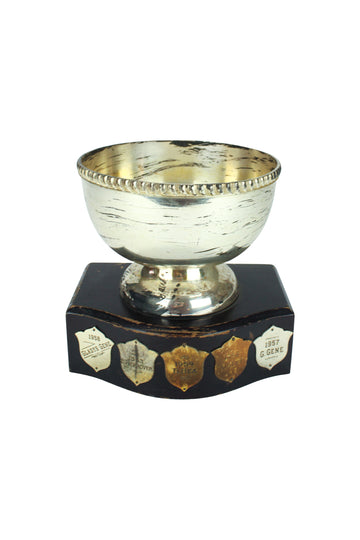 Cup Trophy on Wooden Base