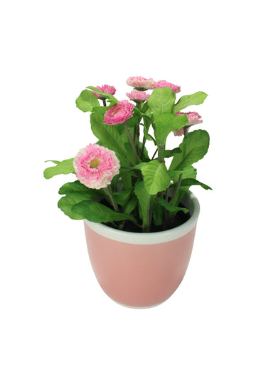 Pink Flowers Planter
