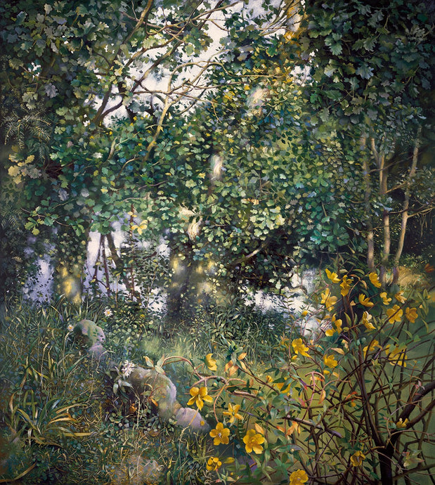 The Painter's Garden with St John's Wort. 1995