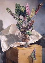 Load image into Gallery viewer, Still-Life (Prayer Plant). 1981