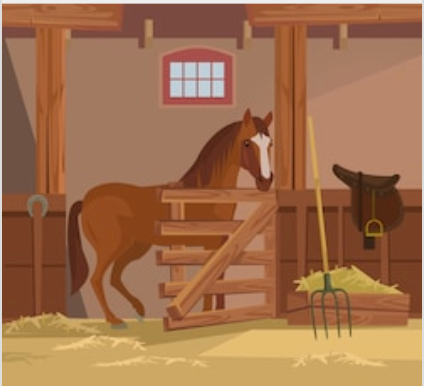 Horse stable products