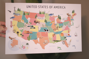 United States Map Background - Pastel Colors