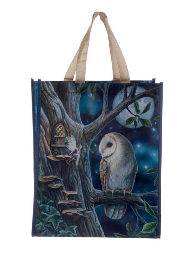 Lisa Parker Fairy Tales Owl and fairy shopping bag