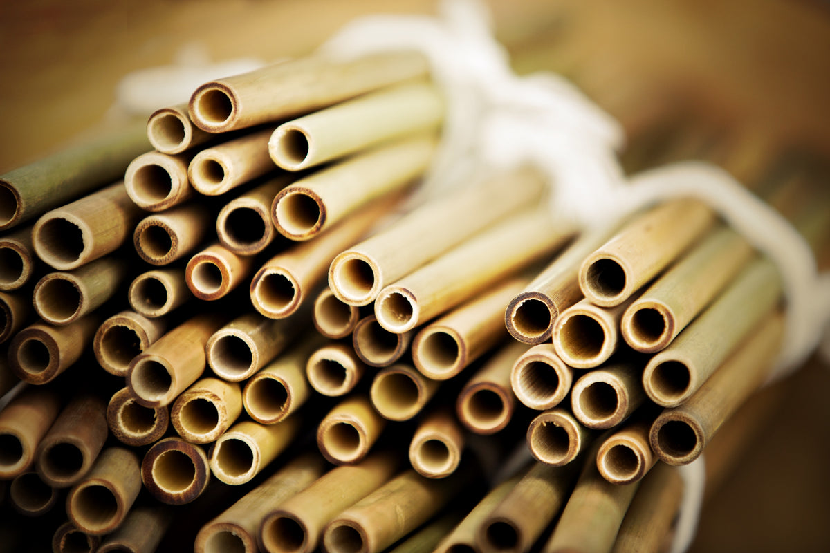 Bamboo Straws; Downton; Recycle
