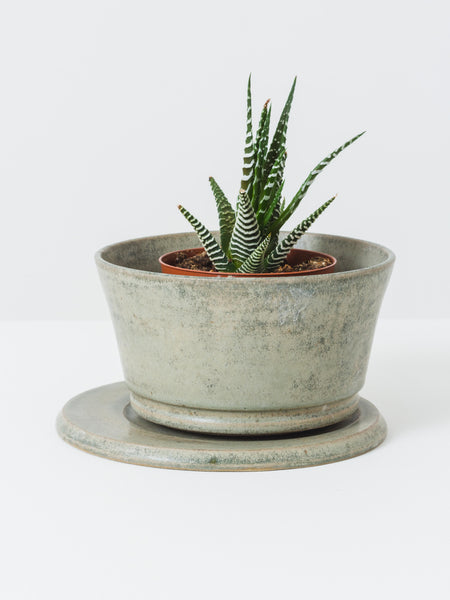 Little Garage Shop - Sage Planter Set