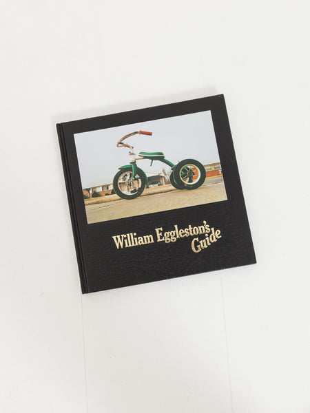 d.a.p.-william-eggleston's-guide