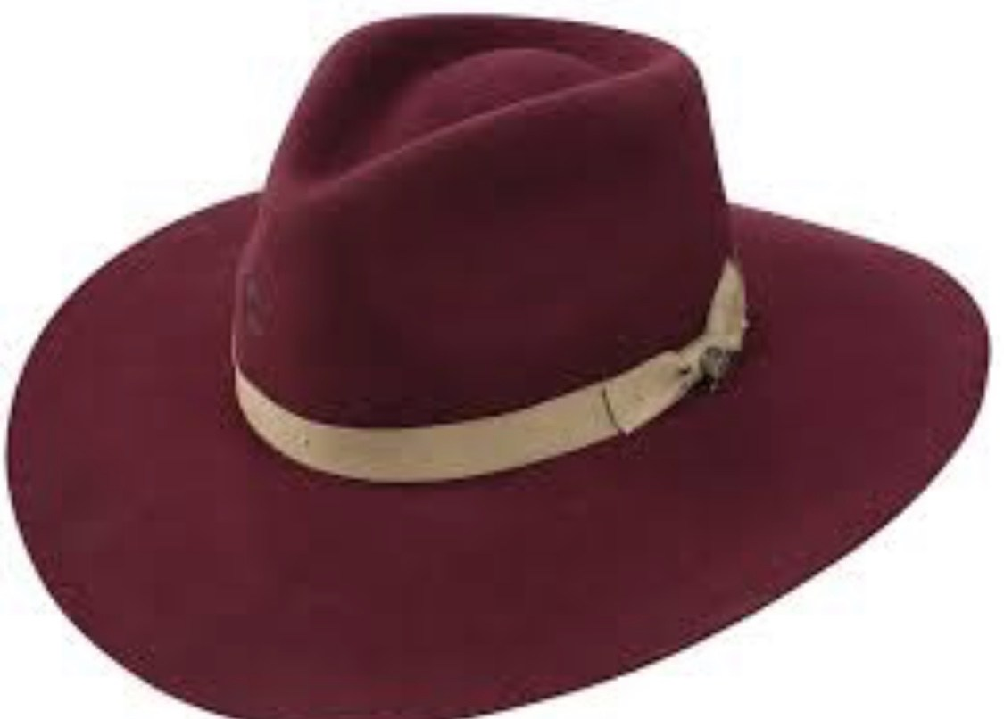 Charlie 1 Horse - Highway Hat Burgundy #1