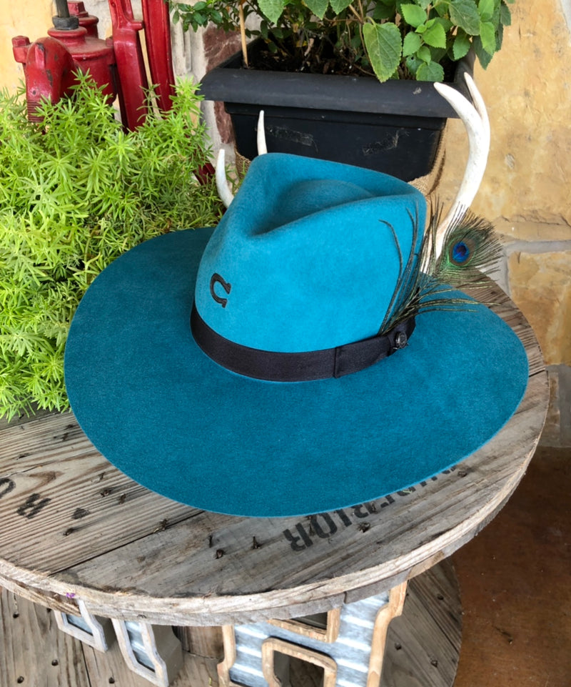 Charlie 1 Horse - Turquoise Highway Hat