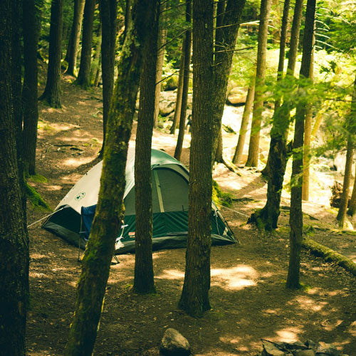 Camping / Outdoor