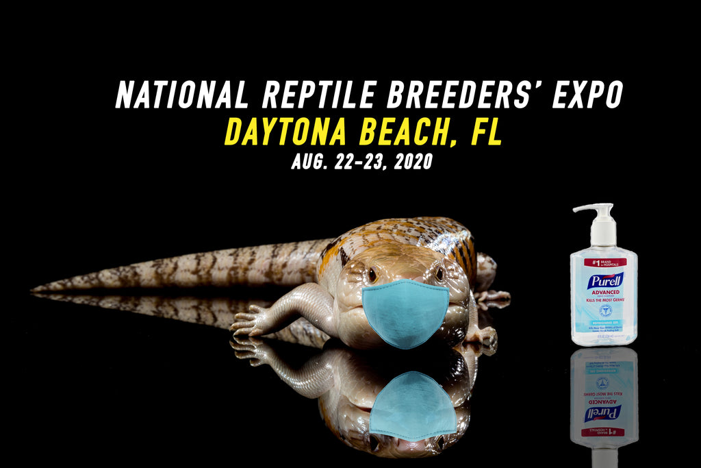 The BIGGEST Reptile Show of The Year is Back! Daytona NRBE !
