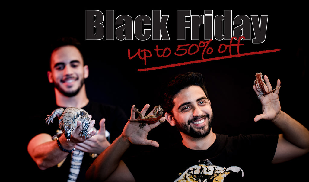 Our Annual Black Friday Sale is BACK!