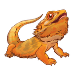 Bearded Dragon Stickers/Decals