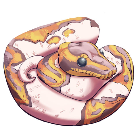 Ball Python Stickers/Decals