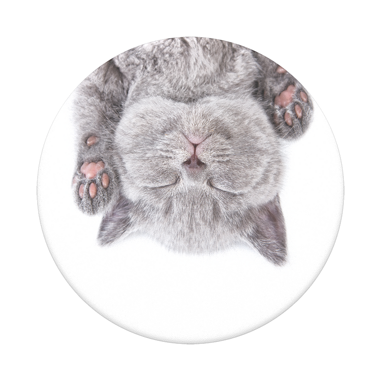 PopSockets Swappable PopGrips Cat Nap