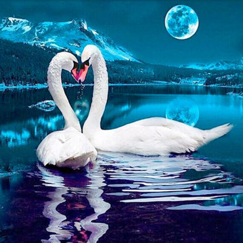 Image of Paint 'N Crafts 12x12'' (30x30cm) Love Swans - Diamond Painting Kit