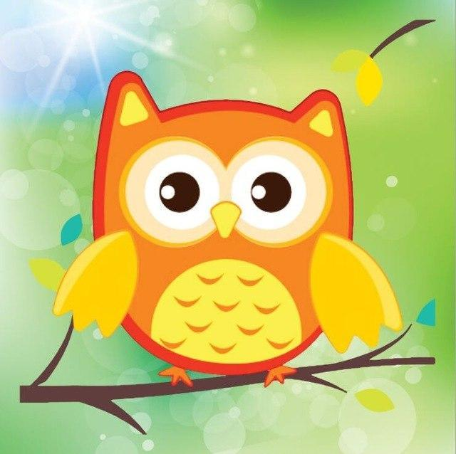 Paint 'N Crafts Orange Owl - Diamond Painting Kit