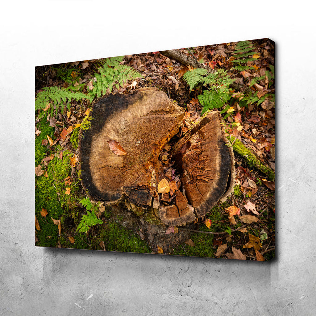 Adirondack Stump Canvas Set