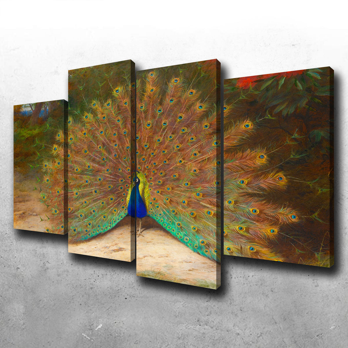 Peacock and Peacock Butterly Canvas Set