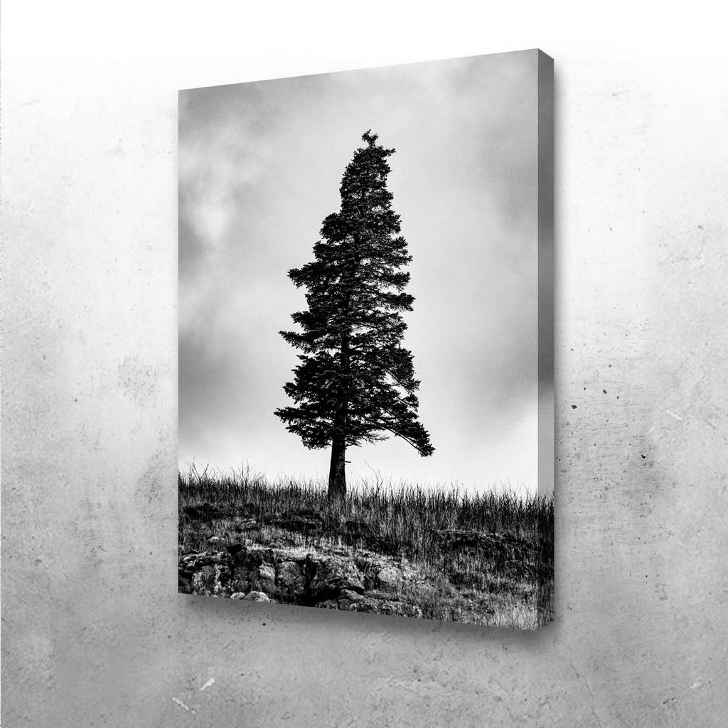 Pine Canvas Set