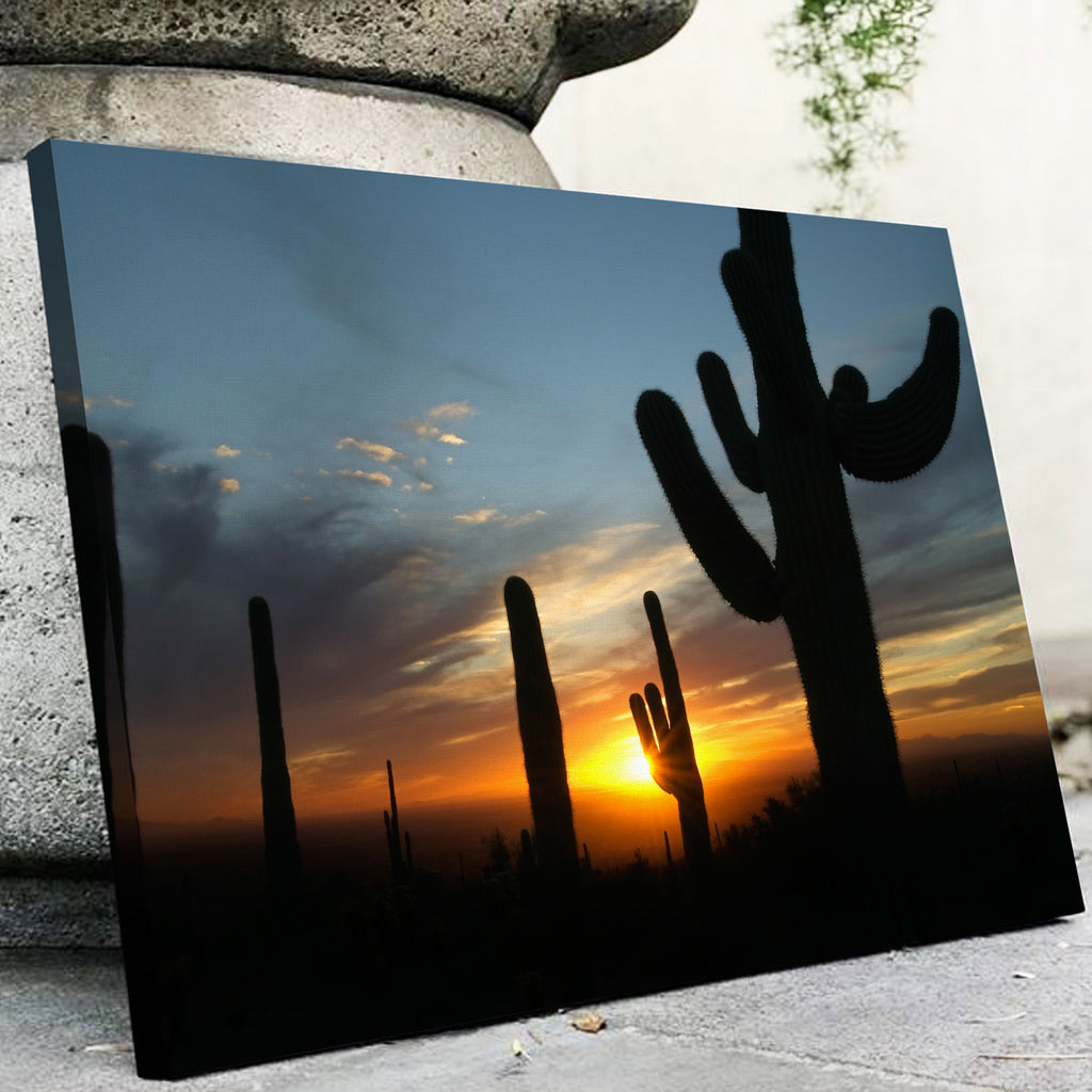 Sonoran Desert Sunset