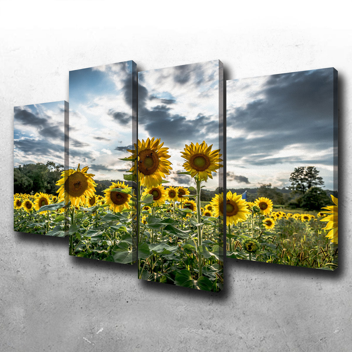 Sunflowers Canvas Set