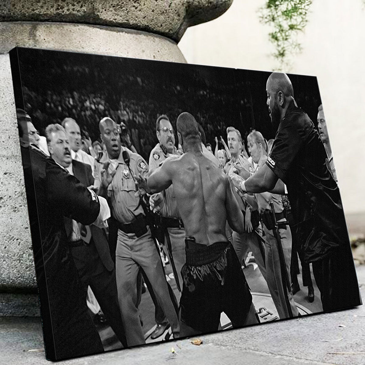 Mike Tyson Canvas Set