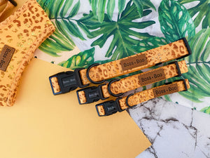 Golden Leopard - Dog Collar