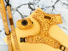 Golden Leopard  - Chest Harness