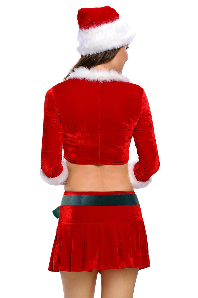 Adult Sexy Ms. Santa Costume