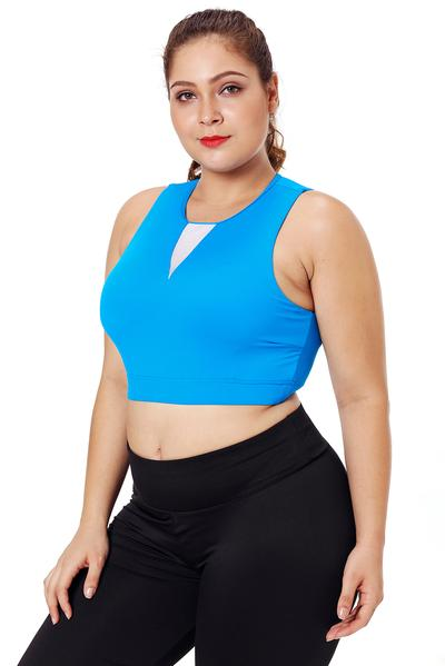 Mesh Insert High Neck Plus Size Sport Bra