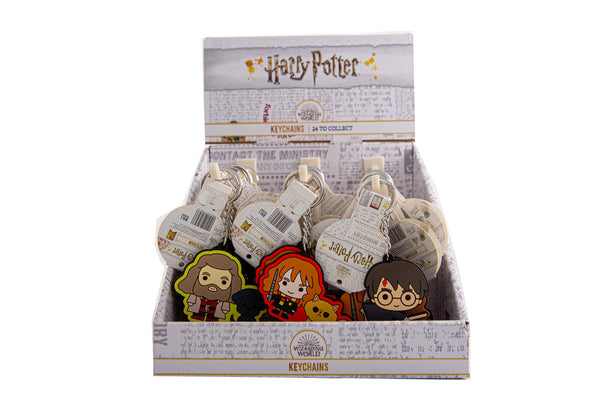 Harry Potter 2D Keychain Assortment In CDU