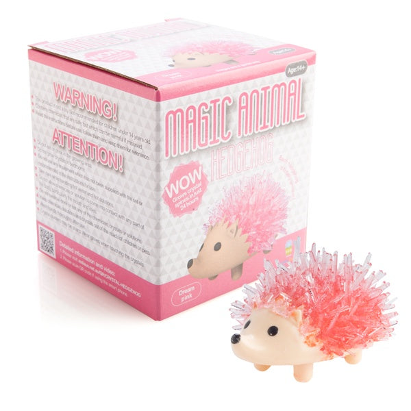 Dream Pink Magic Crystal Hedgehog