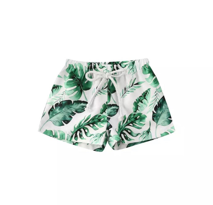 Palm Swimshorts
