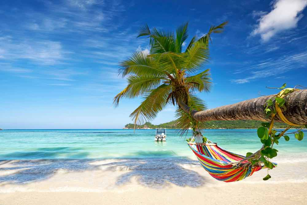 Perfect Beach Hammock Location