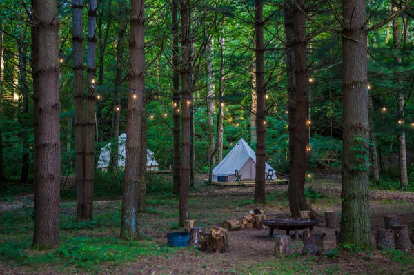 forest glampsite with glamping tents