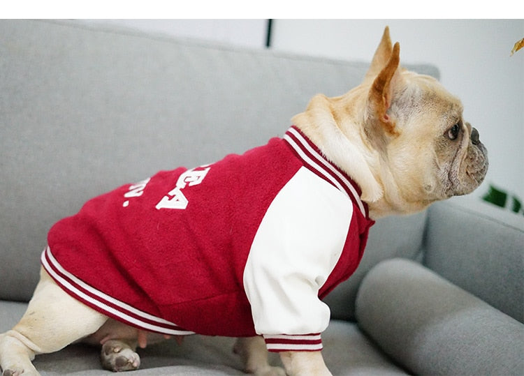 Pet baseball jacket