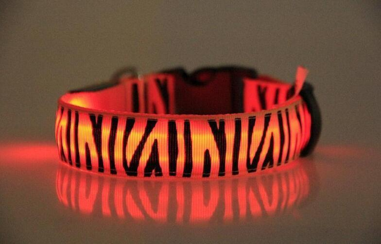 Zebra LED collar