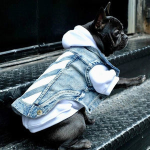 Pet denim jacket