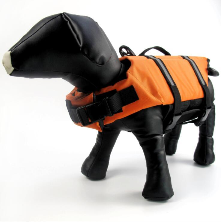 Hi visibility pet jacket