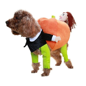 Open image in slideshow, Pet carrying pumpkin costume