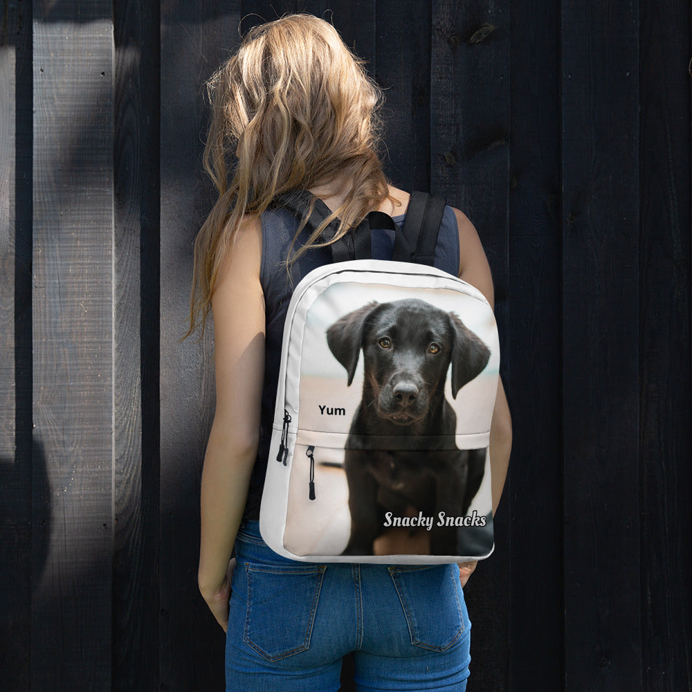 Lab Backpack