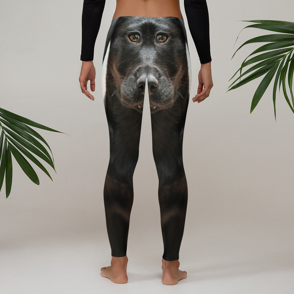 Lab Leggings