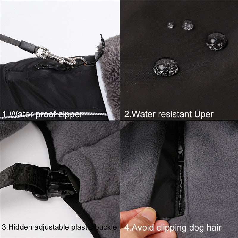 Outdoor Dog Jacket